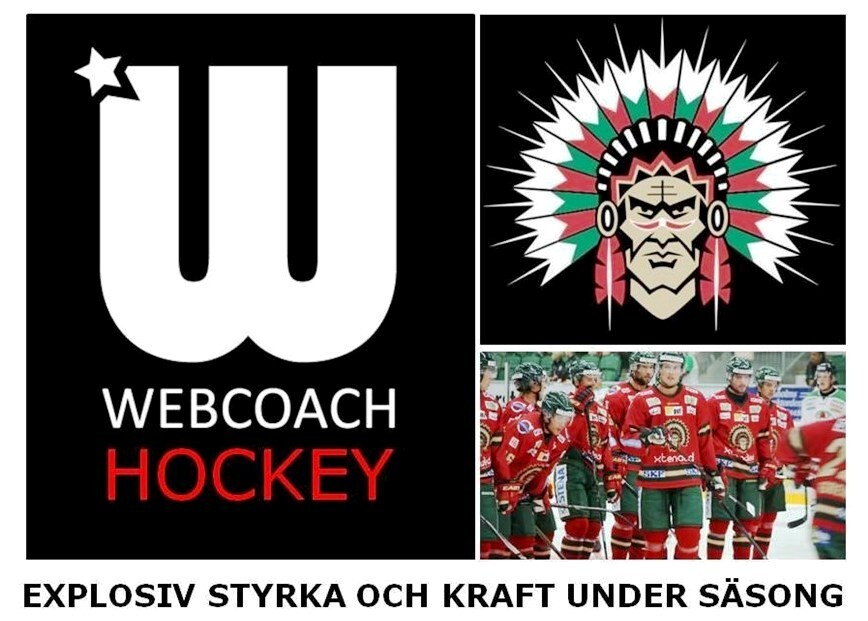 Webcoach Hockey vinner SM-guld 2016